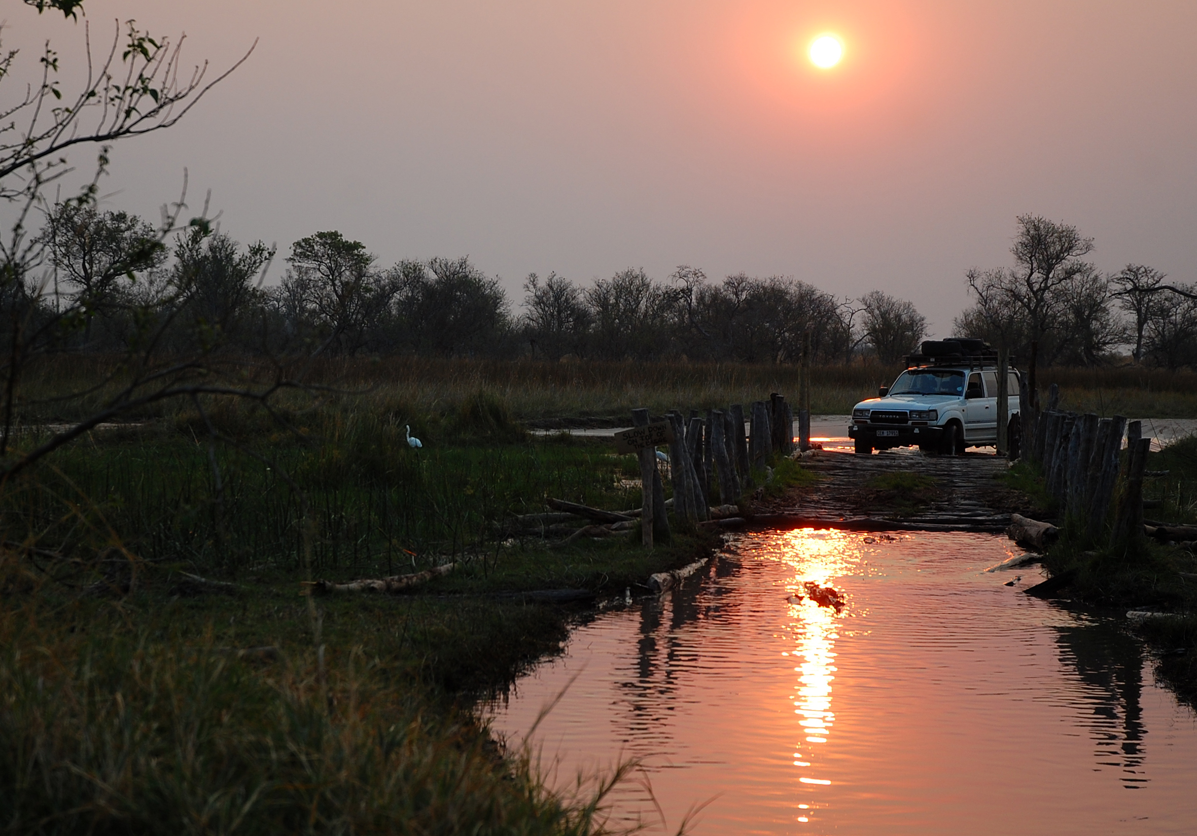 80 series Land Cruiser crossing second bridge in Moremi, Okavango Delta, Botswana.